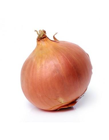 Cebolla Bio Frutería