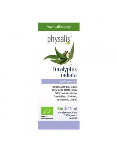Aceite esencial de eucalipto radiata...