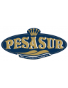 Manufacturer - Pesasur